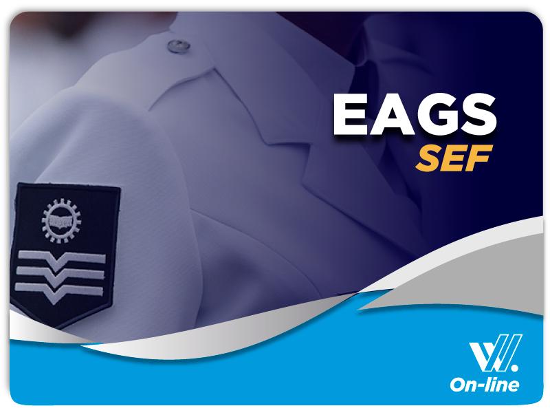 EAGS SEF Técnico em Enfermagem e Português EAD